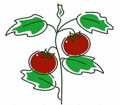 Richmond Community Garden Group logo